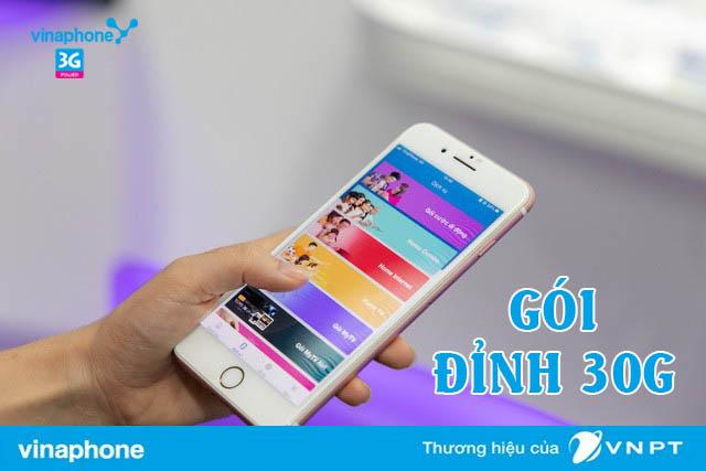 goi-dinh-30G-vinaphone